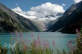 Tirol (298)