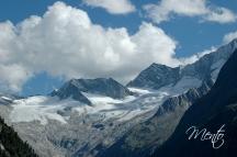 Tirol (303)