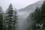 Tirol (56)
